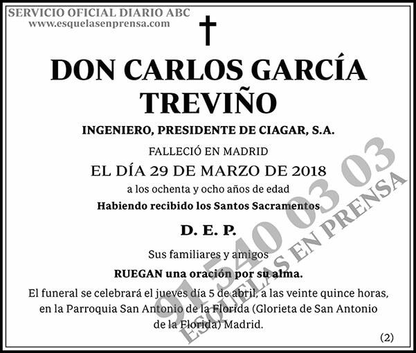 Carlos García Treviño